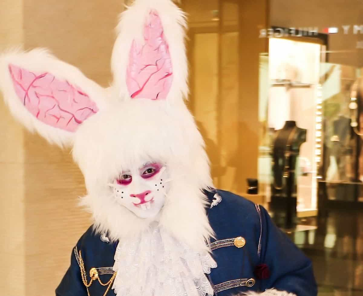 Alice in Wonderland rabbit for hire. Book The March Rabbit for children's Easter parties in London & the UK.