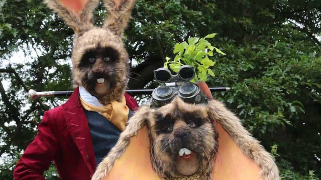 Easter Bunny duo available to hire for Easter events in the UK.