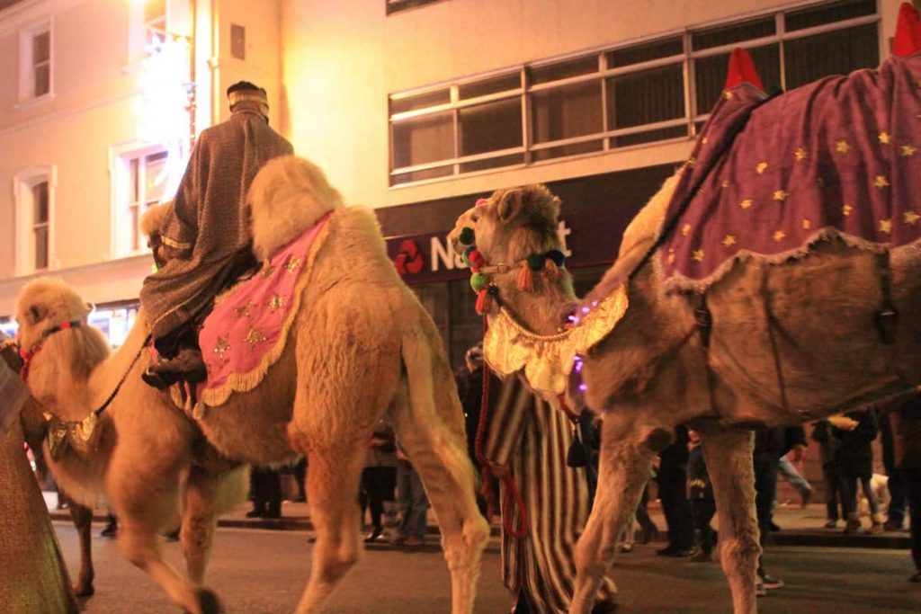 Camels riding through the street for our Newmarket Christmas Parade. This amazing Christmas Parade led to the Christmas Lights where we organised a light switch on ceremony.