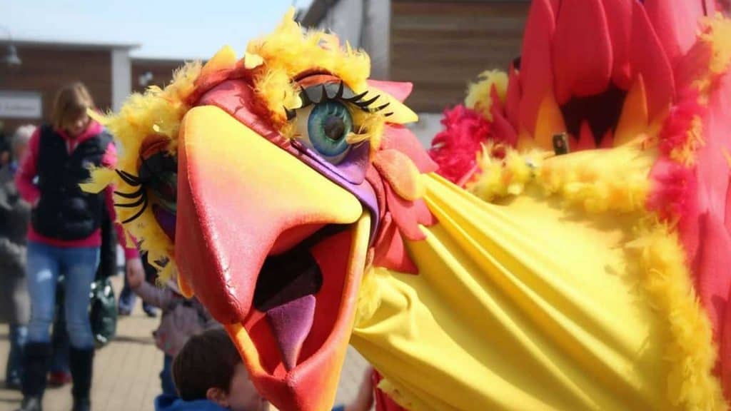 Yellow, orange and red squawk walkabout bird performing at an outdoor event.