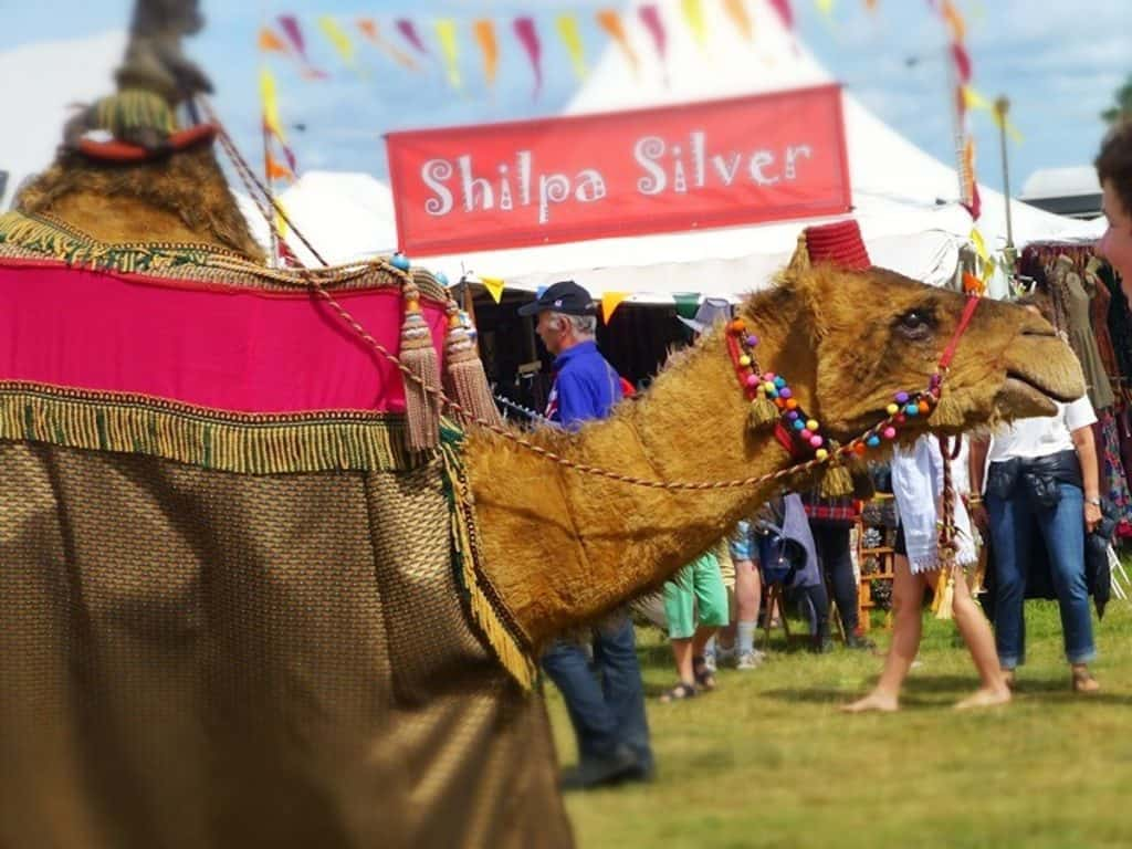 Prince Amir and Camel duo available to book for retail events and festivals in the UK.