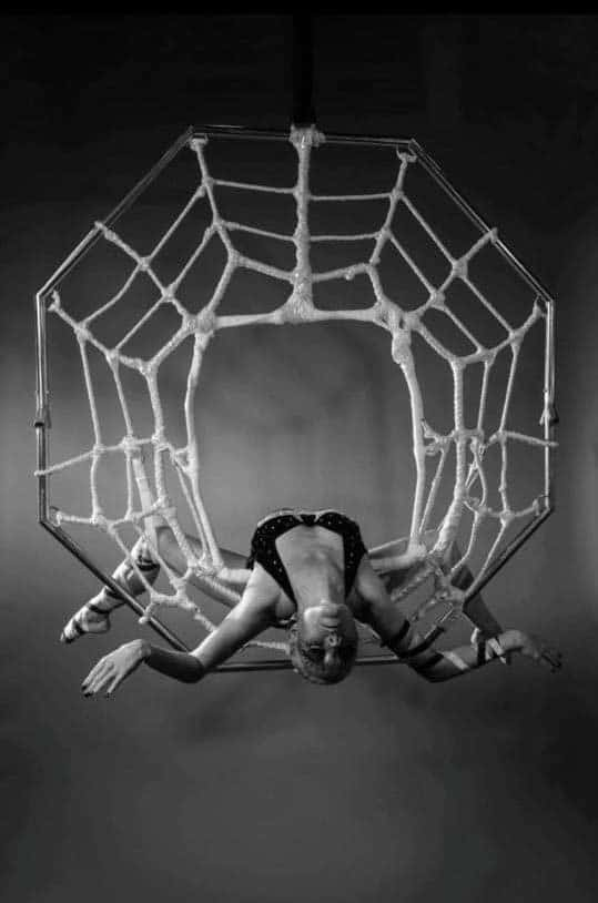 Aerial Spider Performer for hire. Book our aerial acrobatic show is available to hire for bespoke events in the UK & London.