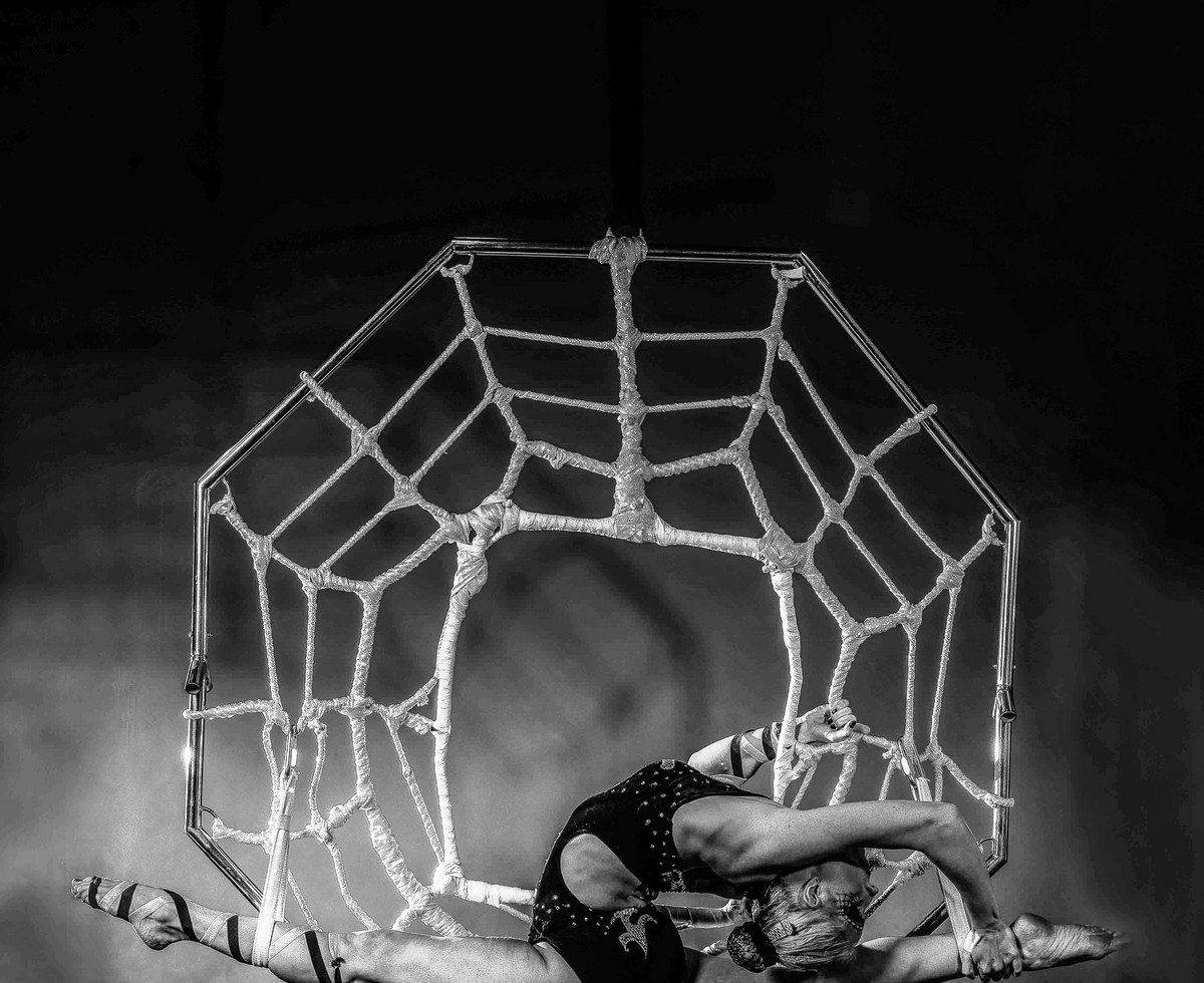 Aerial contortionist for hire. Book our Aerial Spider Web Act for Halloween-themed events in London & the UK.