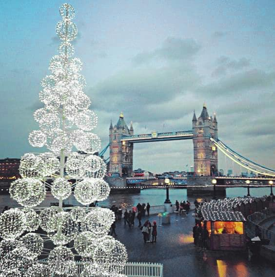 LED tree from city hall for hire.
