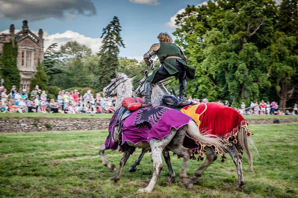 Medieval themed jousting shows for hire for family fun days, St George's Day events and more.