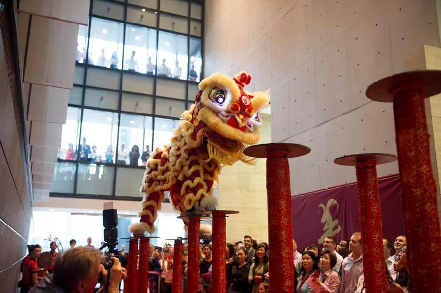 Northern Chinese Lion Dancers for hire. Book our jumping Chinese Lion Dancers for Spring Festival events in Australia & the UK.