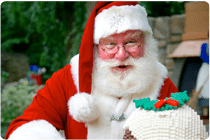 Book our Father Christmas this winter and make your child's dream come true