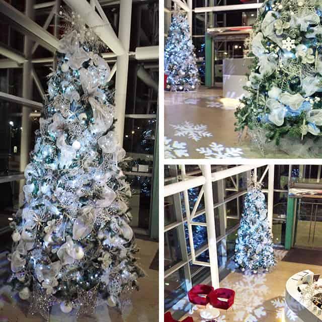 Christmas Trees Bristol: Tower Wharf Bristol's 'Winter Wonderland' Bespoke