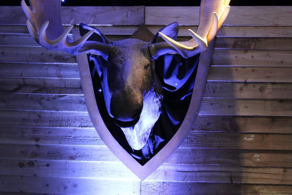 Alaskan themed set design - Talking moose head hire for events