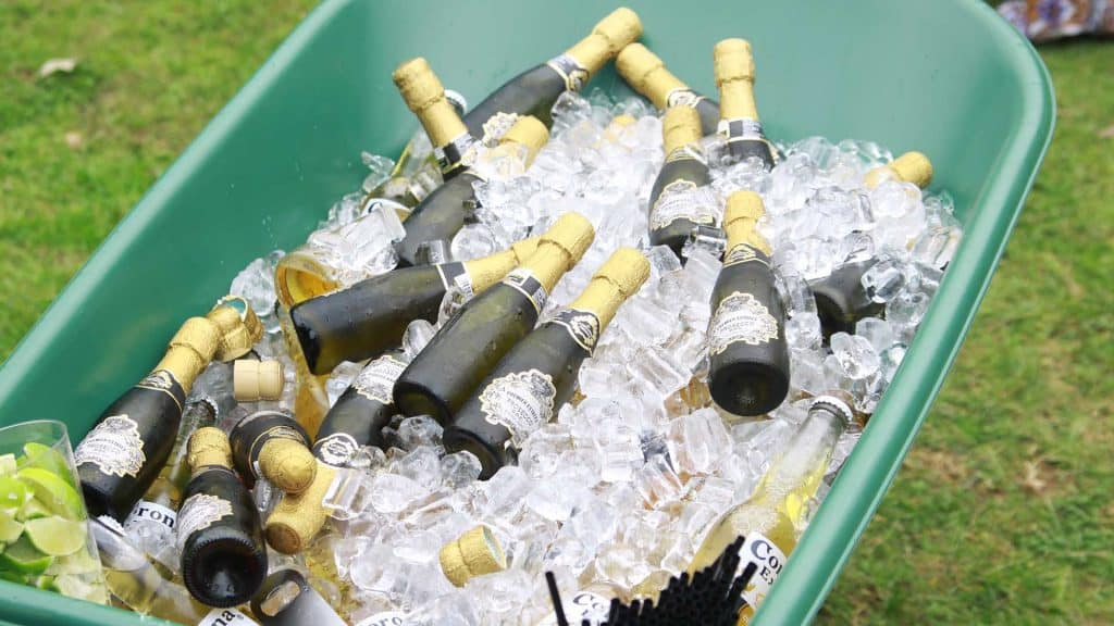 Green wheelbarrow with several bottles of champagne and ice to cater to guests at our Private Festival event.
