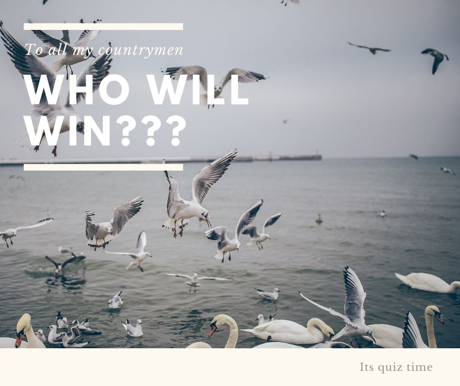 Who will win our image competition?
