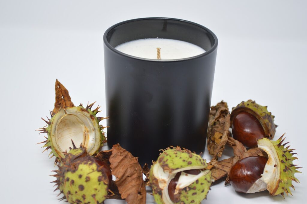 Candle surrounded by conkers created in Autumn candle making workshop